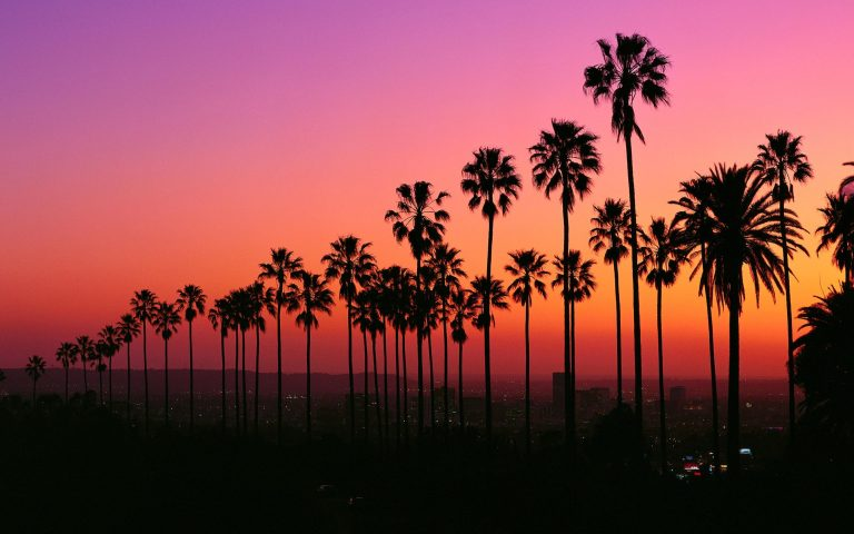los angeles wallpaper 234